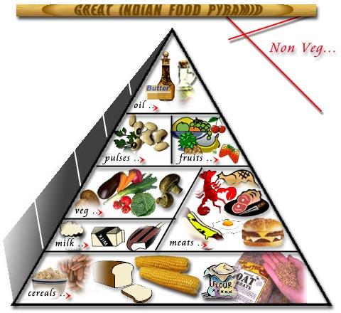 Diabetes India Indian Pyramid Non Vegetarians